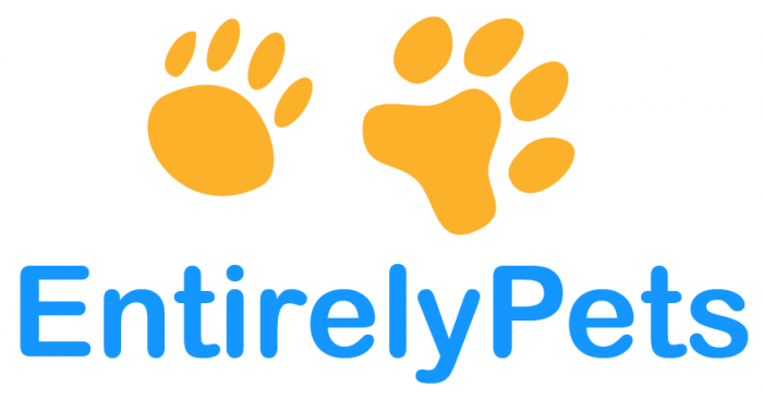 Top 50 Pet Charities Of 2020 Entirelypets